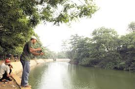 Blog Ease Hutan Kota Srengseng Memiliki Bentang Konfigurasi Lahan Beragam