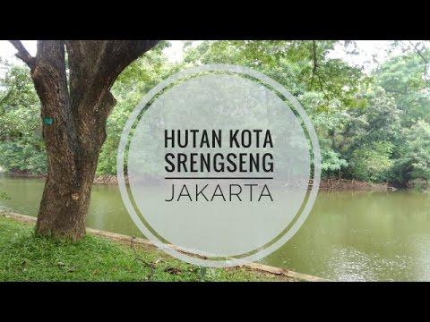 Gambar Hutan Kota Srengseng Jakarta Youtube Rebanas Administrasi Barat