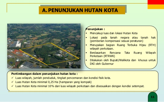 Hutan Kota Penyelenggaraan Meliputi Penunjukan Pembangunan Penetapan Pengelolaan 10 11