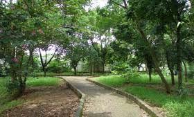 Hutan Kota Srengseng Blog Ease Administrasi Jakarta Barat