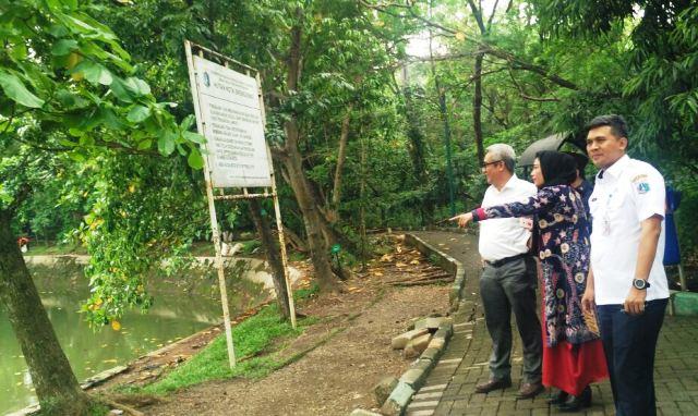 Hutan Kota Srengseng Dibuat Jungle City Berita Pemerintah Administrasi Jakarta