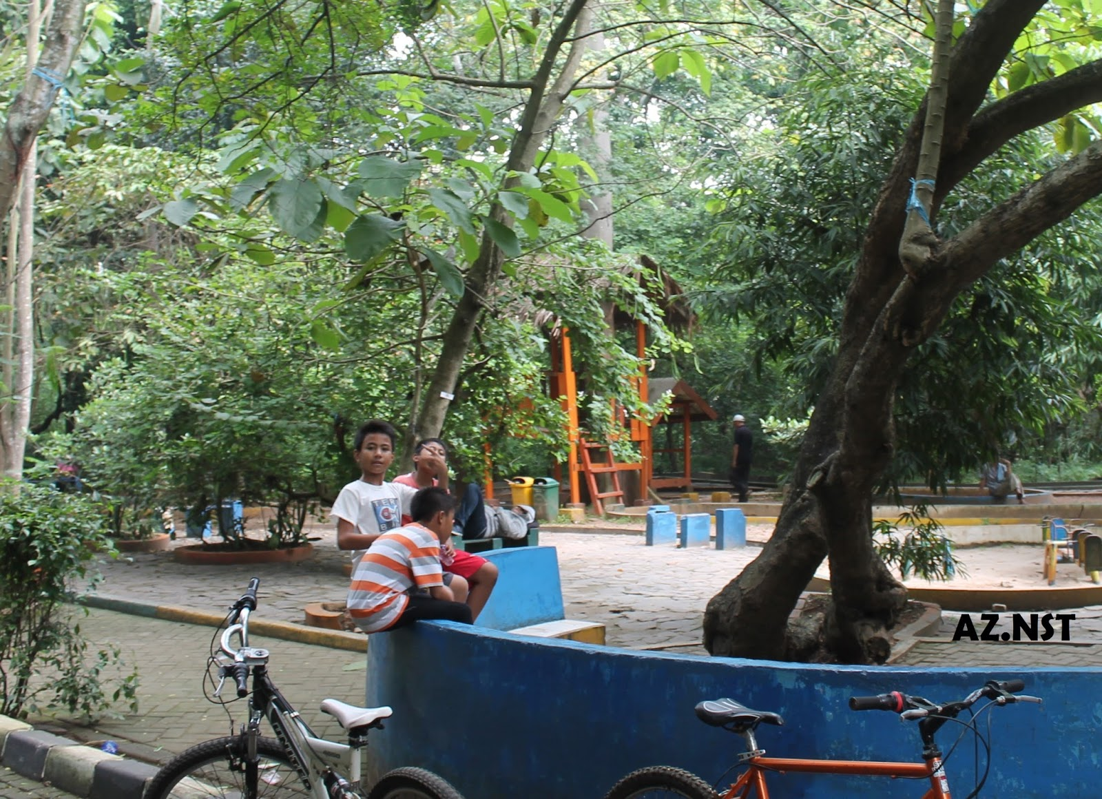 Info Lingkungan Juli 2013 Bermain Hutan Kota Srengseng Sawah Administrasi