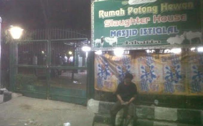 Breaking News Usai Isya 50 Sapi Kurban Rph Istiqlal Disembelih