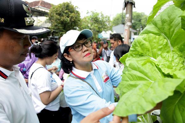Jakarta Pusat Pemerintah Kota Administrasi Sudin Kpkp Lakukan Penelitian Kandungan