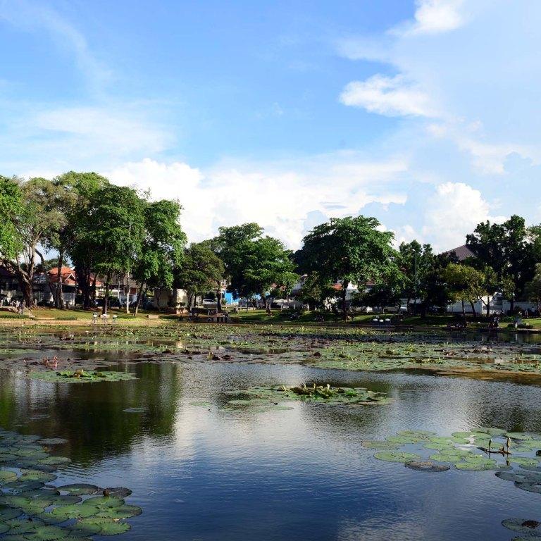 Kedamaian Lembang Tengah Keriuhan Kota Danau Taman Rumah Ribuan Jenis