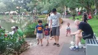 Kumpulan Hasil Kerja Ahok Viyoutube Lumpulan Video Terbaru 3e Taman