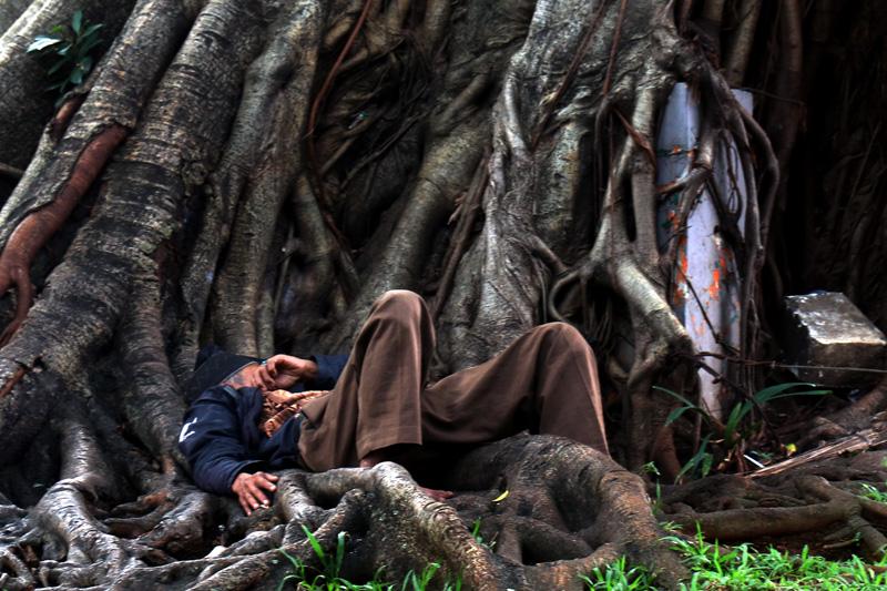 Taman Lembang Ditutup Pria Tidur Bawah Pohon Rindang Berada Tepi