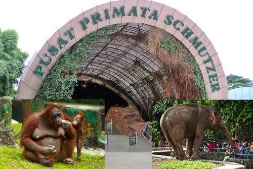 2016 08 07 Wisata Indonesia Dunia Kebun Binatang Ragunan Berdiri