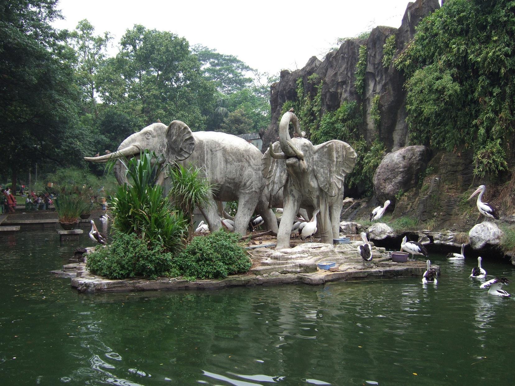7 Tempat Wisata Jakarta Selatan Mall Kebun Binatang Ragunan Kota