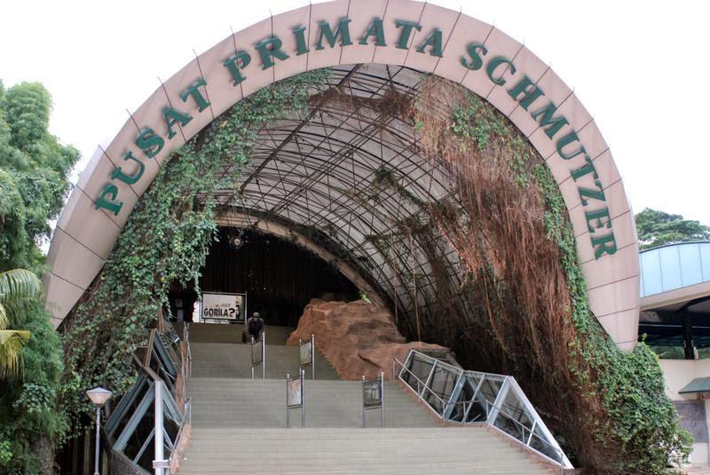 Daftar 7 Tempat Rekreasi Murah Jakarta Wajib Dikunjungi Pusat Primata