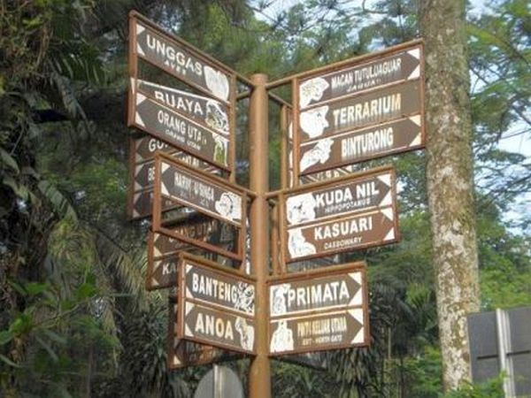 Kebun Binatang Ragunan Jakarta Andri Blog Luasnya Kawasan Terbaik Melihat
