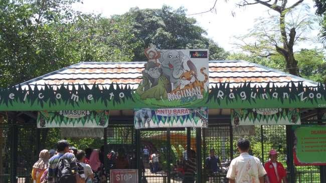 Kebun Binatang Ragunan Jakarta Andri Blog Pintu Masuk Sebelah Barat