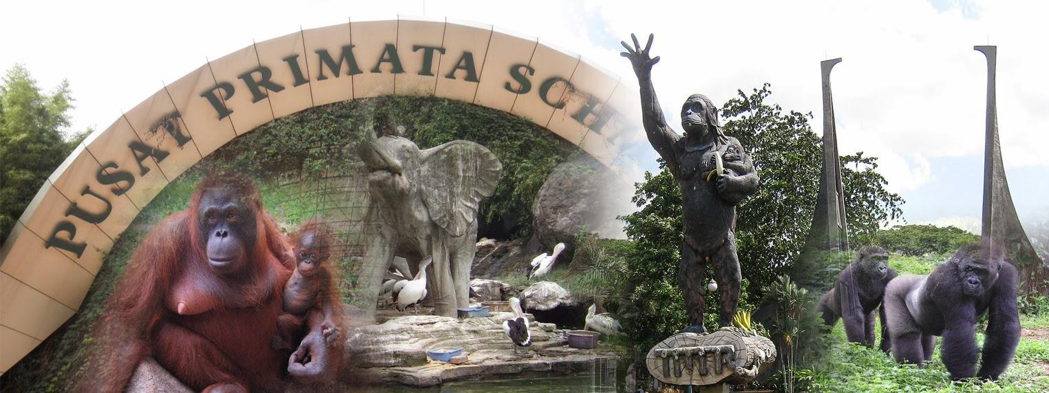 Kebun Binatang Ragunan Jakarta Wisata Belajar Bagi Anak Kota Administrasi