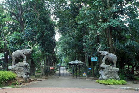 Kebun Binatang Ragunan Thejakartareview Kota Administrasi Jakarta Selatan