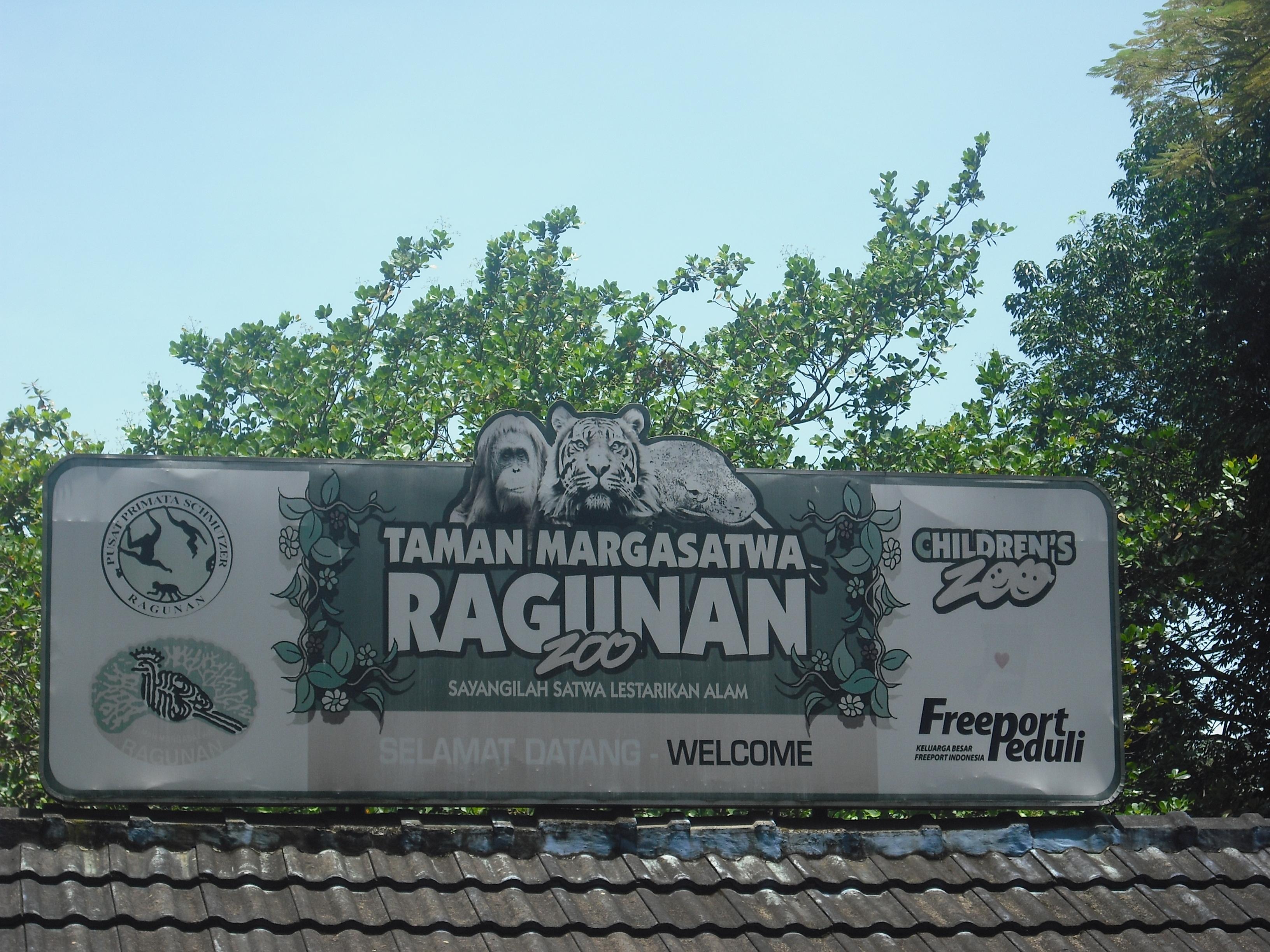 Kebun Binatang Ragunan Tour Indonesia Luas Sekitar 140 Hektar Dscf5323