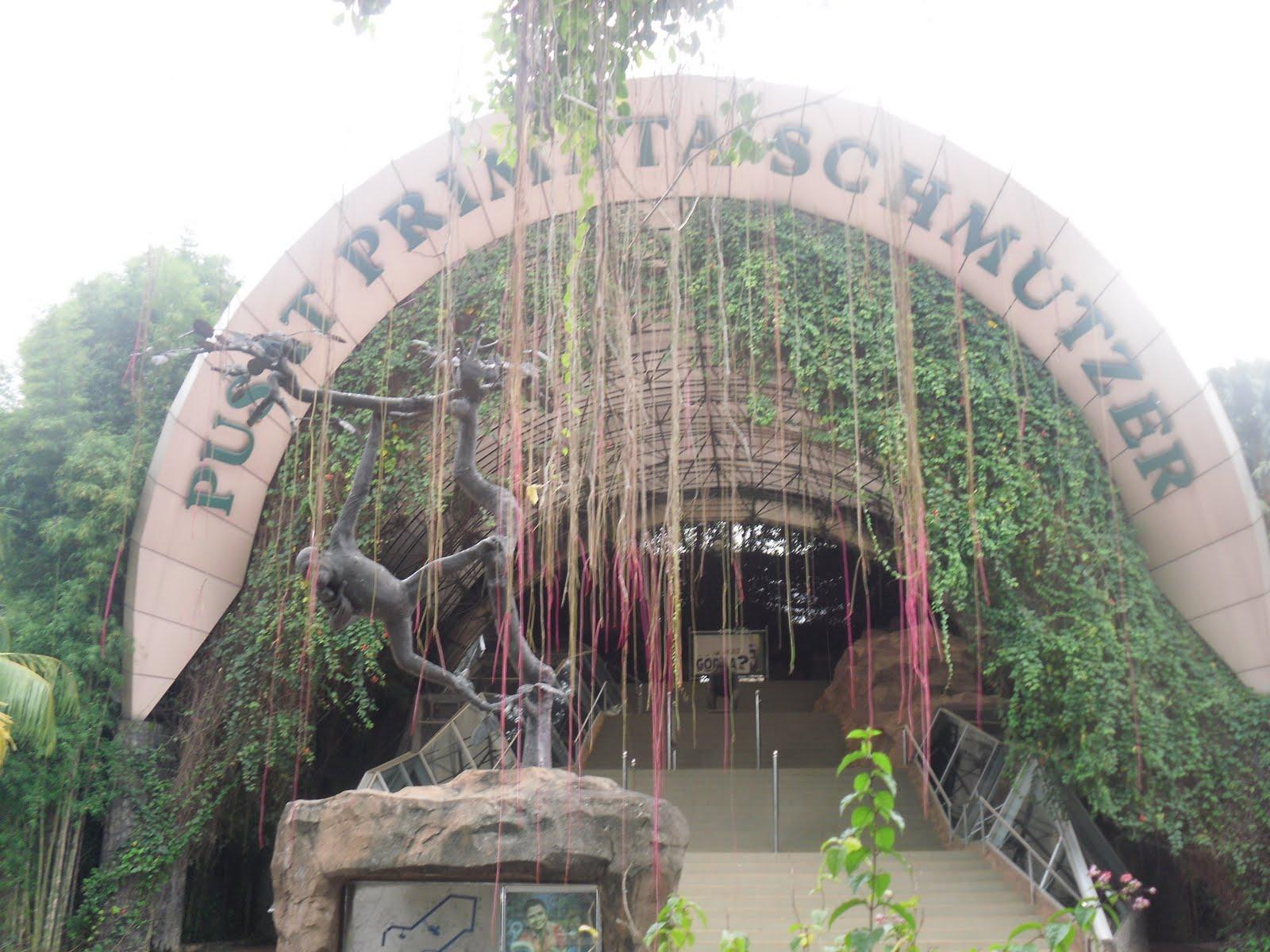 Neria Life Kebun Binatang Ragunan Kota Administrasi Jakarta Selatan