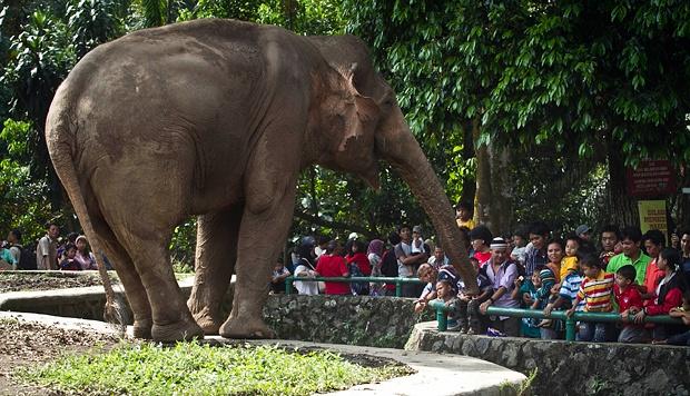 Pariwisata 1966 Dipindahkan Lokasinya Jakarta Selatan Namanya Pun Berganti Taman