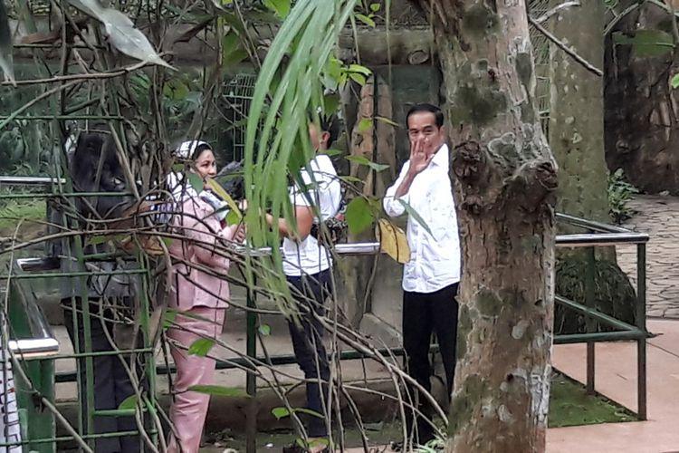 Sebut Ragunan Bagus Anak Tapi Jokowi Tak Bawa Cucu Presiden