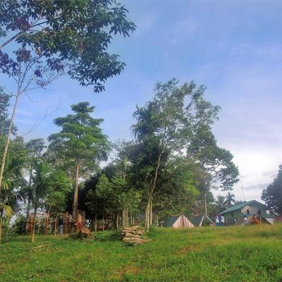 10 Gambar Taman Nasional Bukit Barisan Selatan Letak Balai Besar