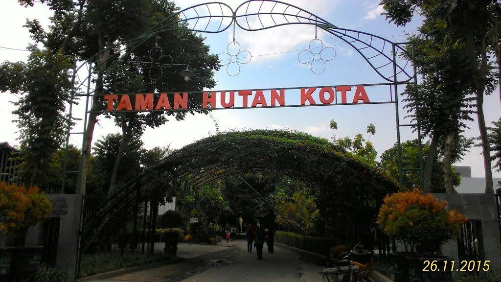 Mengenal Kota Tulungagung Backpacker Jakarta Taman Hutan Foto Panoramio Tebet