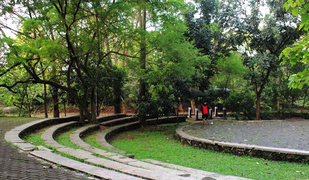 Nature Taman Hutan Tebet Kota Administrasi Jakarta Selatan