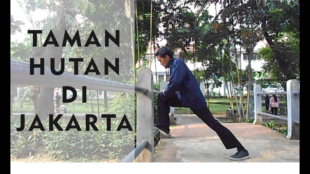 Taman Honda Tebet Sampai Sebuah Hutan Jakarta Kota Administrasi Selatan