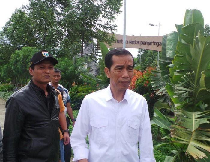 Taman Hutan Kota Penjaringan Jokowi Cek Tanaman Blusukan Tebet Administrasi