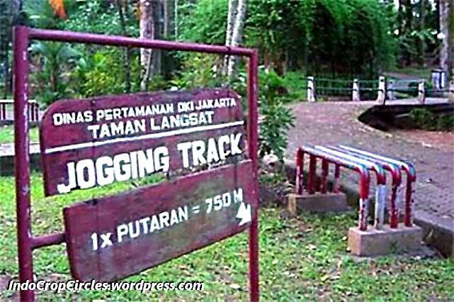 World Mystery Mei 2013 Taman Langsat Mayestik Jakarta Selatan Hutan