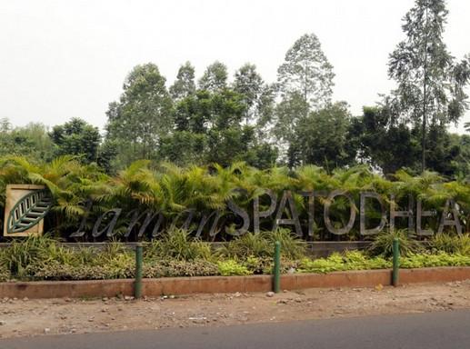 Destinasti Objek Wisata Taman Spathodea Jagakarsa Dki Jakarta Keindahan Selatan