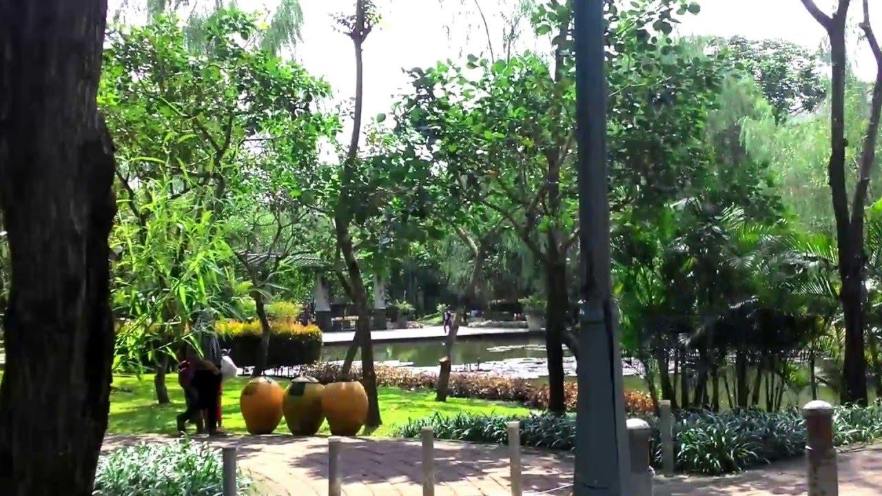 Wisata Taman Spathodea Youtube Kota Administrasi Jakarta Selatan