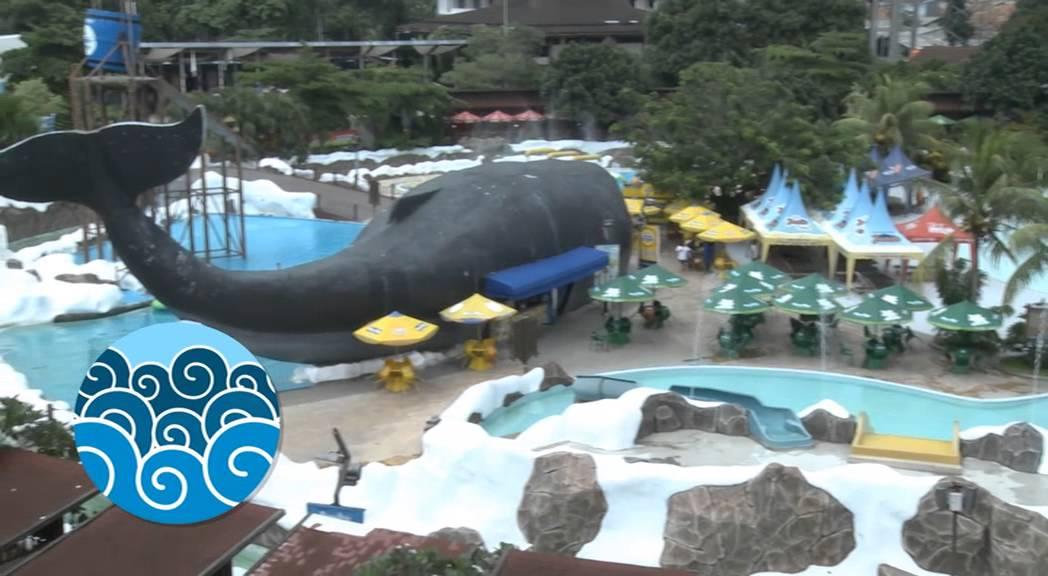 Informasi Seru Kolam Megah Snow Bay Jakarta Snowbay Waterpark Kota