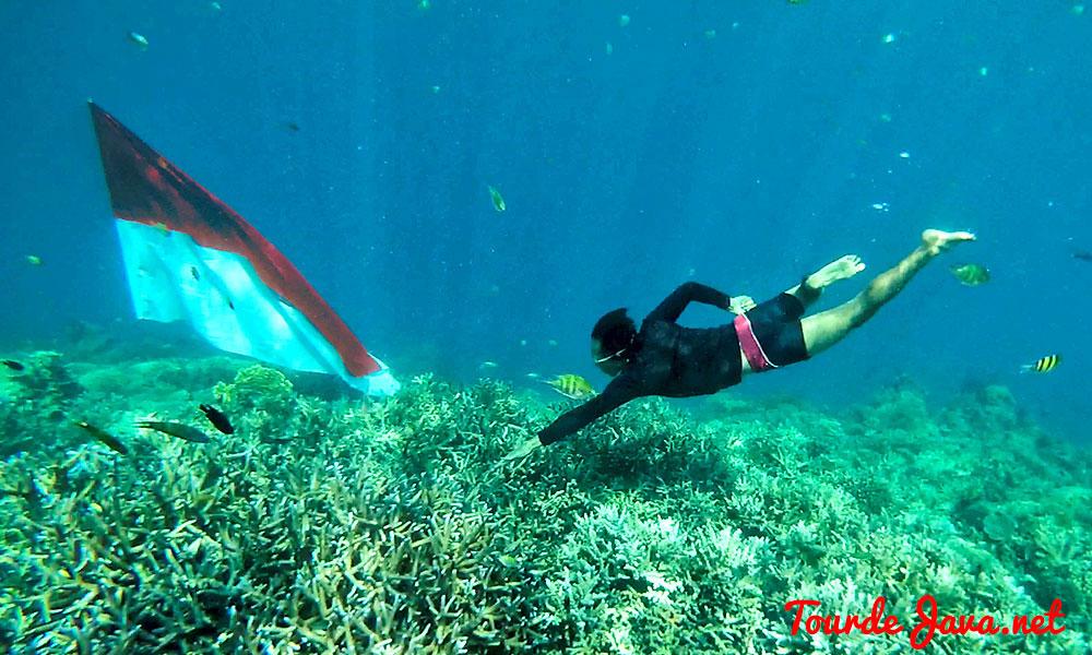 Pulau Harapan Pesona Alami Kepulauan Seribu Wisata Kota Administrasi Jakarta