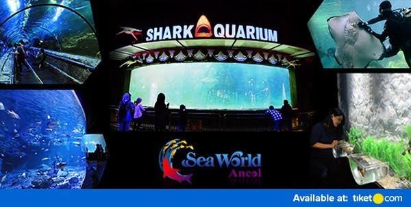 Seaworld Ancol Cari Tiket Murah Taman Impian Ocean Dream Kota