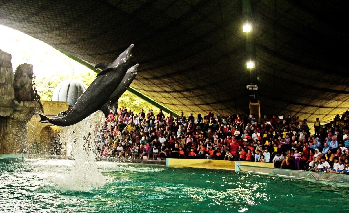 Serunya Liburan Ocean Dream Samudra Jakarta Panduan Wisata Ancol Kota