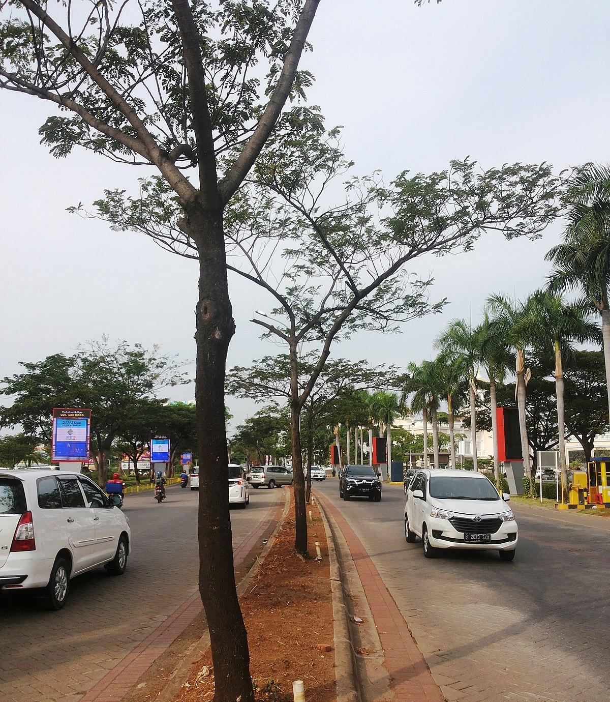 Pantai Indah Kapuk Wikipedia Waterbom Jakarta Kota Administrasi Utara