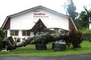 Siwalima Museum Ambon Utiket Siwa Lima Kota