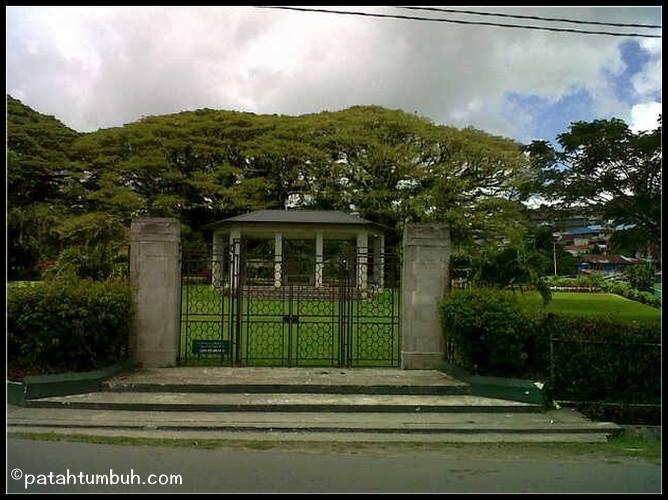 Lapangan Merdeka Ambon Lilianpsp Dipakai Sebagai Lokasi Foto Pre Wedding