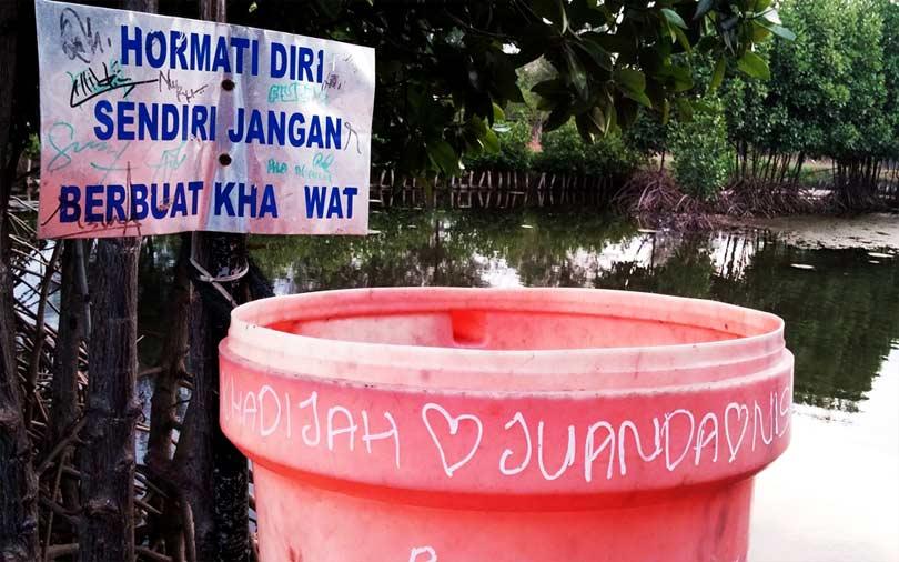 5 Hal Dilakukan Hutan Kota Banda Aceh Bni