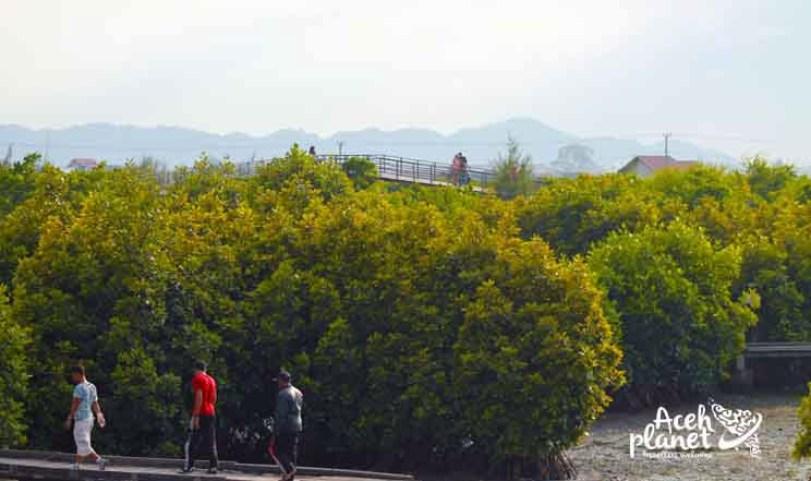 Bertamasya Hutan Bni Kota Banda Aceh Planet Hijau Bebas Polusi