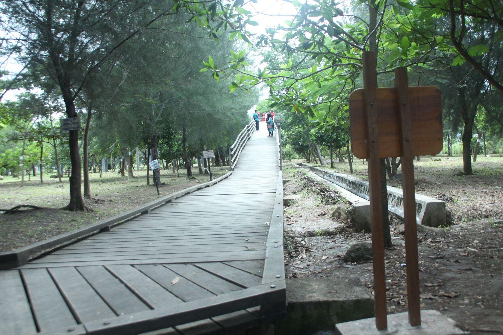 Hutan Tibang Banda Aceh Steemit Kota Dibangun Atas Kerja Sama