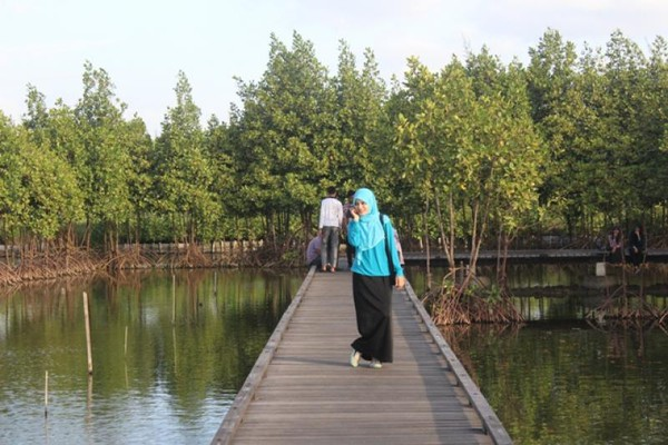 Siapa Sangka Banda Aceh Punya Hutan Kota Secantik Wisatawan Melintasi