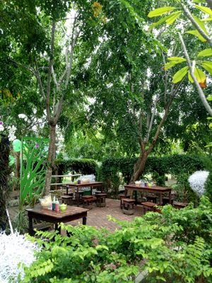 Taman Hutan Kota Bni Twitter Halo Sahabat Hijau Banda Aceh
