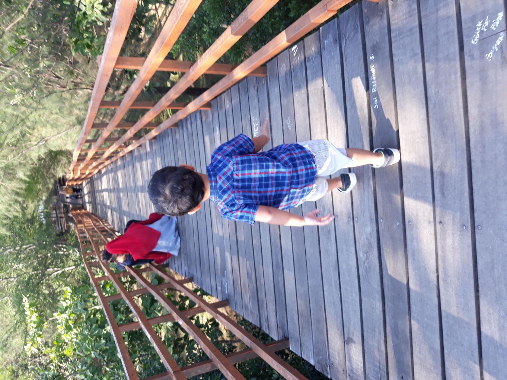 Taman Kota Sebuah Objek Wisata Steemit Namanya Hutan Bni Banda