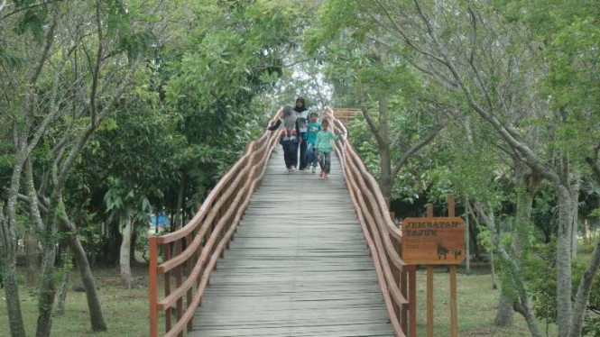 Taman Kota Tibang Hutan Mini Nusantara Utara Banda Aceh Viva