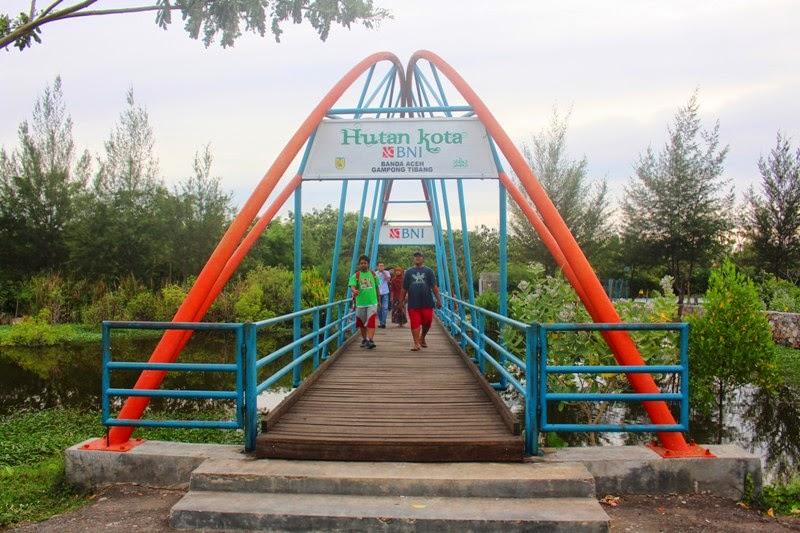 Yuk Kenal Nama Latin Tumbuhan Hutan Kota Bni Abuhaifa Banda