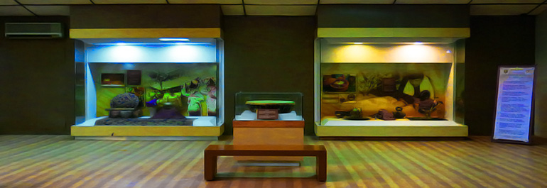 Mampir Museum Lampung Tunawisma Musium Kota Bandar