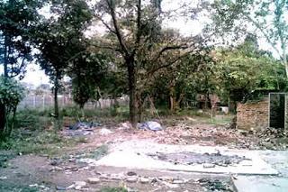 Taman Hutan Kota Halim Tempat Wisata Bandar Lampung Foto Hijauku