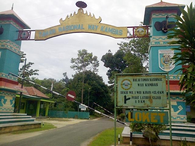 Kambas Tempat Wisata Gajah Lampung Terbesar Indonesia Kusnendar Pintu Utama