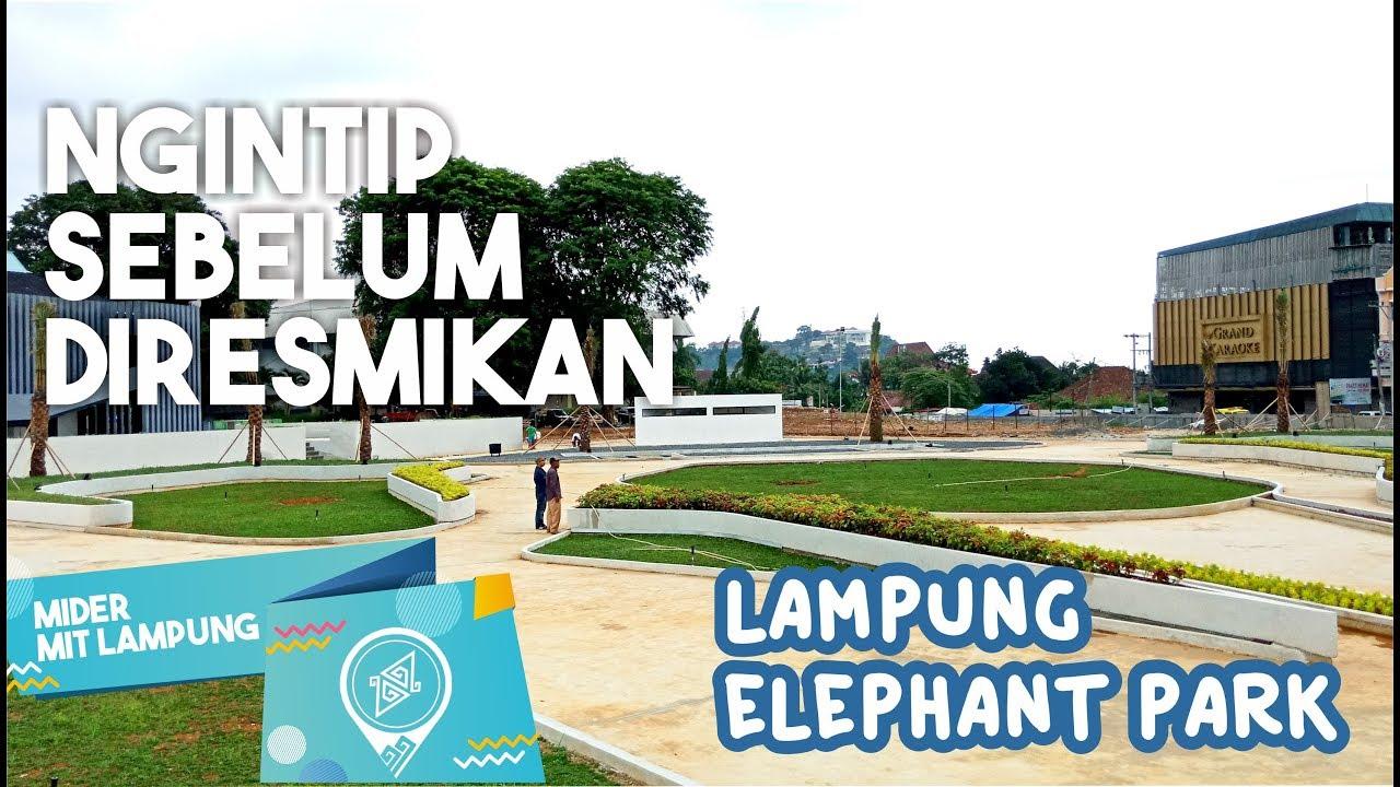 Mider Mit Lampung Ngintip Taman Gajah Sebelum Openning Youtube Kota