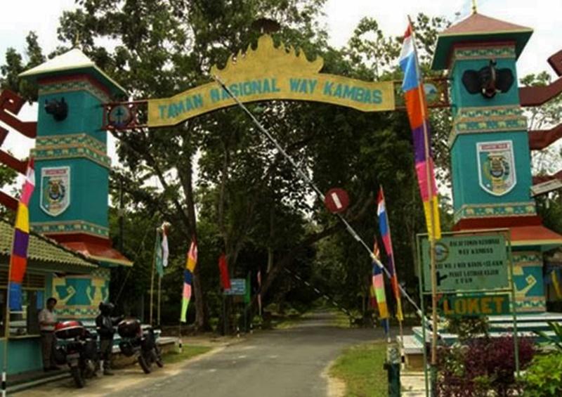 Tempat Wisata Taman Nasional Kambas Lampung Timur Pintu Masuk Gajah